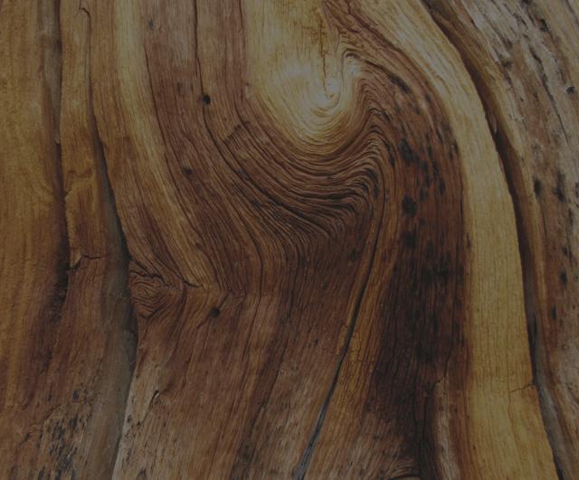 Картинки по запросу Wood and leather png scent